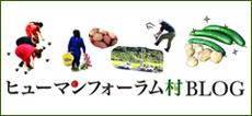 HF研修ブログ